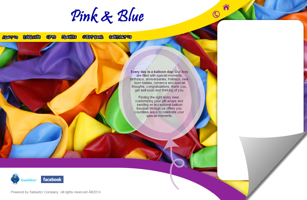 pinkblueballoons.png
